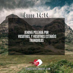 Versiculos Biblicos De Proteccion