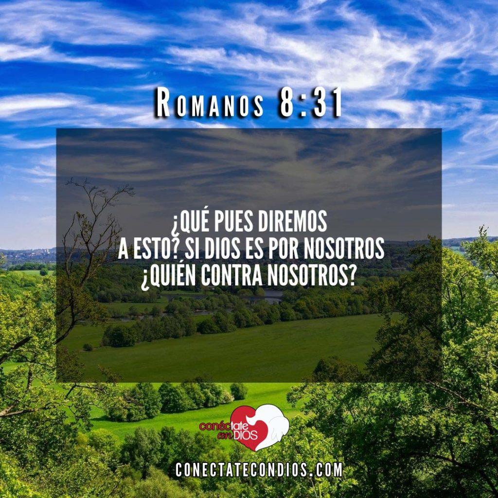 Versiculos de Protección De Dios Sobre Sus Escogidos