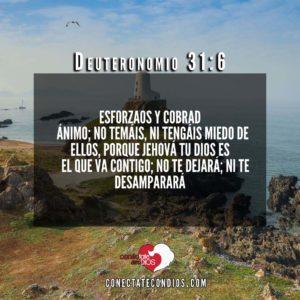 deutoronomio 31 6 vericulos y salmo de proteccion