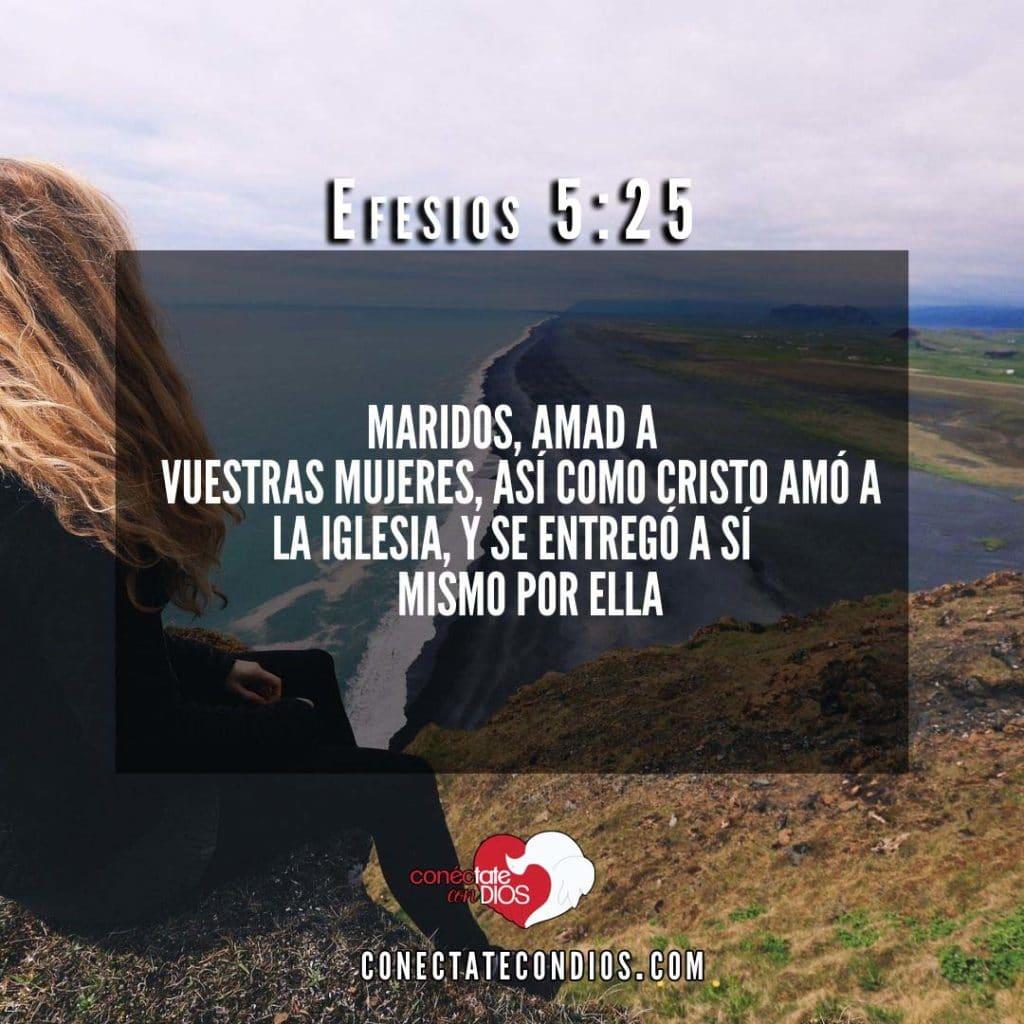 efesios 5 25 versiculos sobre el matrimonio