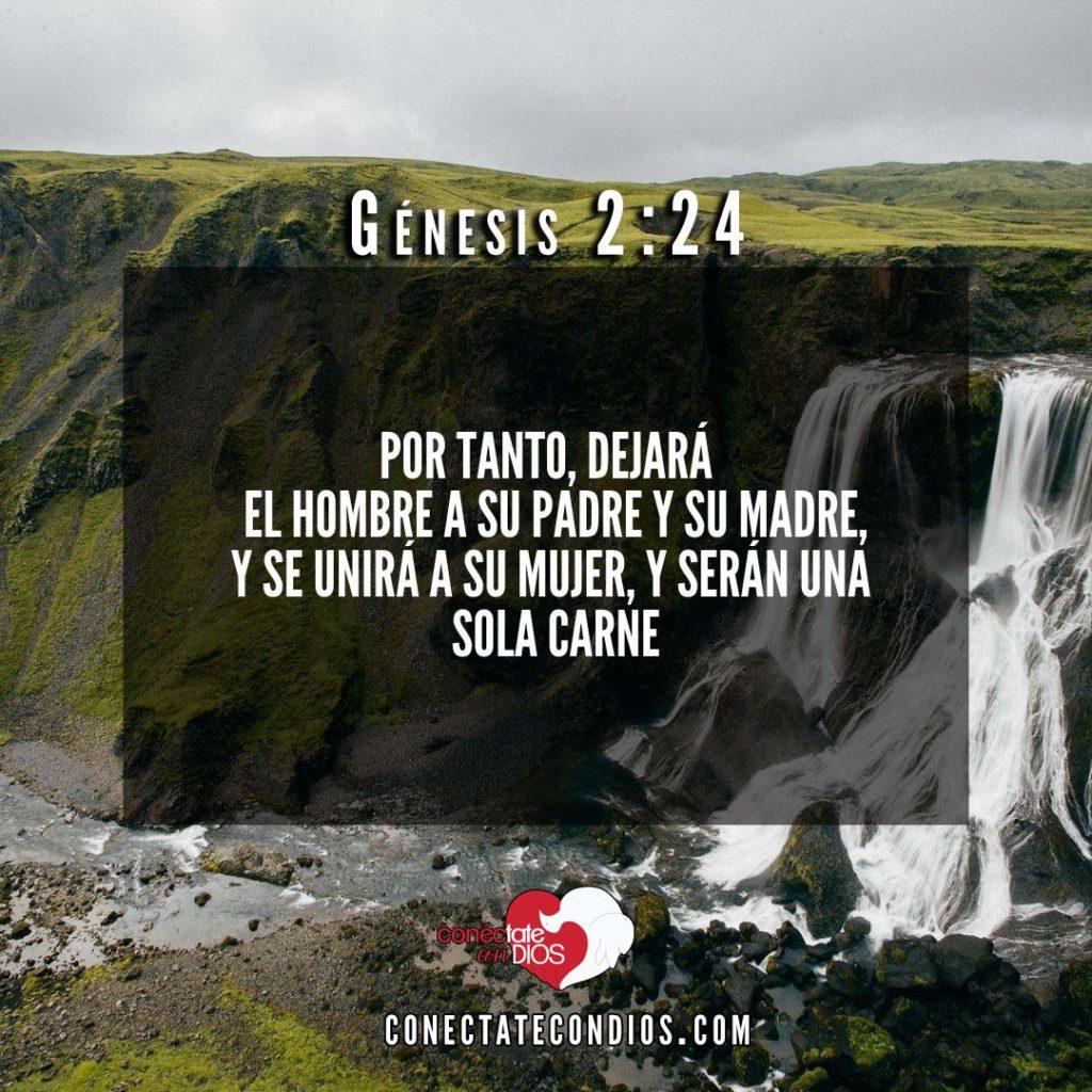 genesis 2 24 versiculos para matrimonios