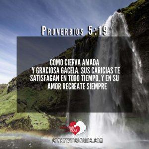 proverbios 5 19 versiculos biblicos sobre el matrimonio